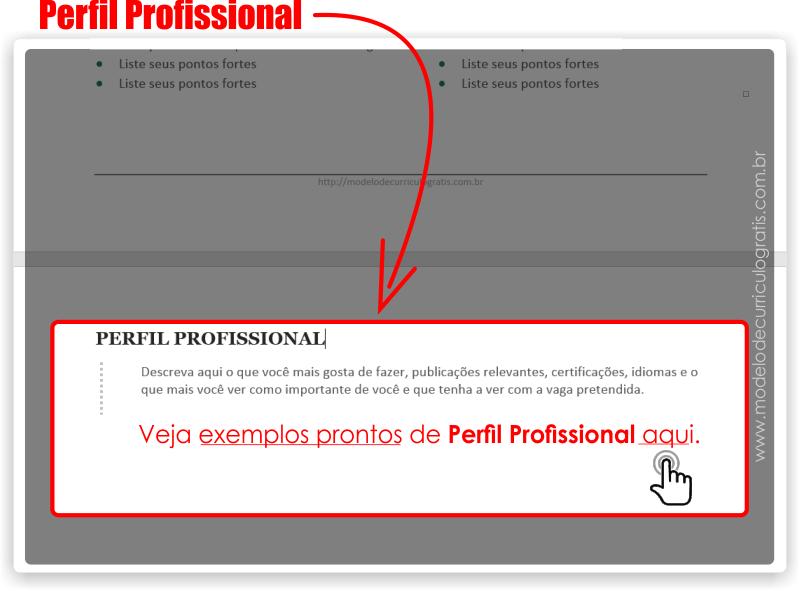 Como Fazer um Currículo - Perfil Profissional